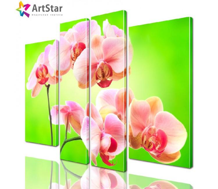 Модульная картина - Цветы, Art. flrs_0155