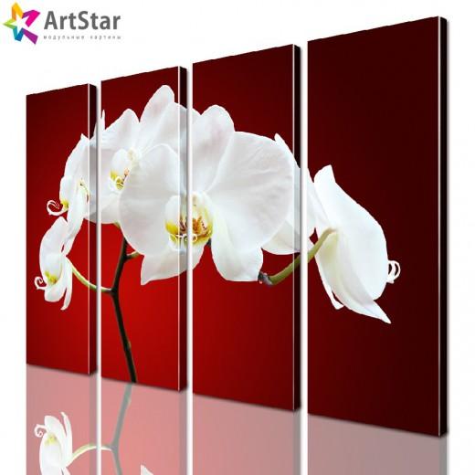Модульная картина - Цветы, Art. flrs_0103