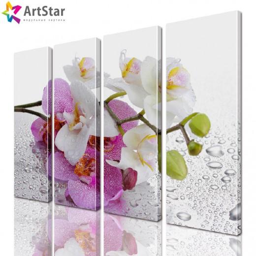 Модульная картина - Цветы, Art. flrs_0106