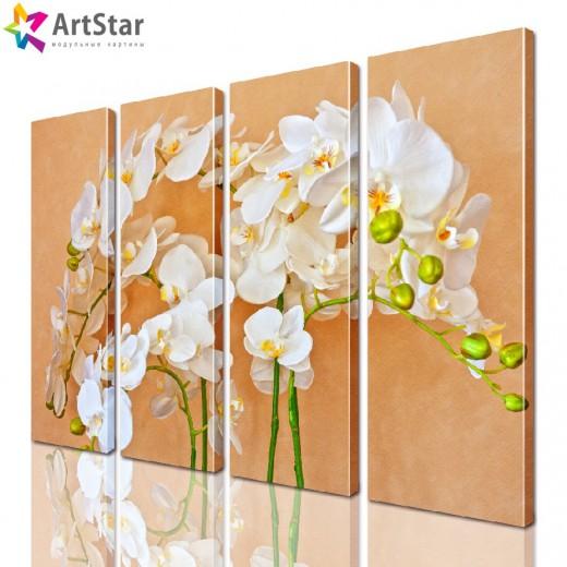 Модульная картина - Цветы, Art. flrs_0112