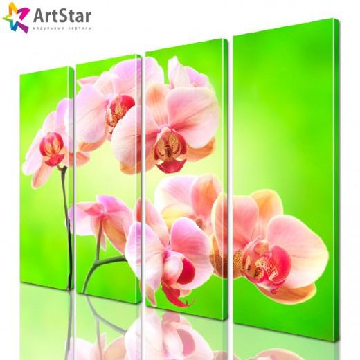 Модульная картина - Цветы, Art. flrs_0115