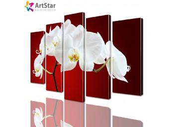 Модульные картины - Орхидеи, Art. flrs_0223
