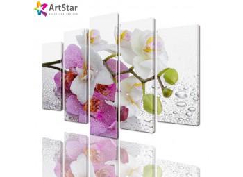 Модульные картины - Ветка орхидеи, Art. flrs_0226