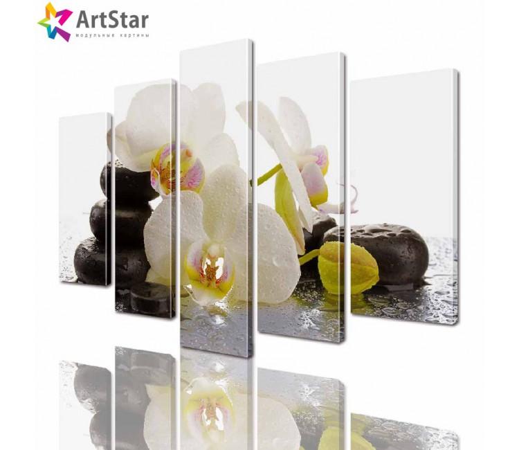 Модульные картины - Орхидея, Art. flrs_0228