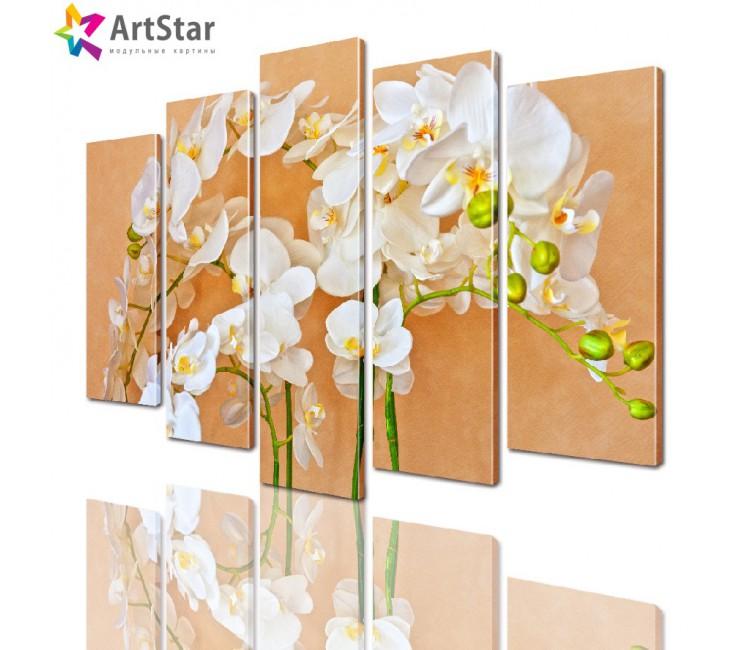 Модульные картины - Соцветие орхидеи, Art. flrs_0232