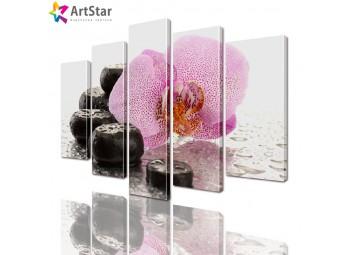 Модульные картины - Орхидея и камушки, Art. flrs_0240