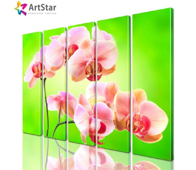 Модульная картина - Цветы, Art. flrs_0195