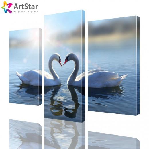 Картина модульная - Лебеди на пруду, Art. anml_0041