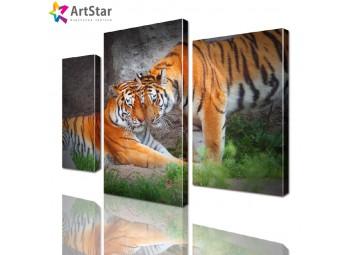 Картина модульная - Пара тигров, Art. anml_0043