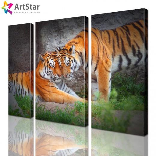 Картина модульная - Семья тигров, Art. anml_0019