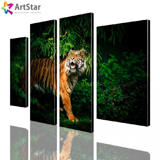 Модульная картина - Тигр, Art. anml_0094