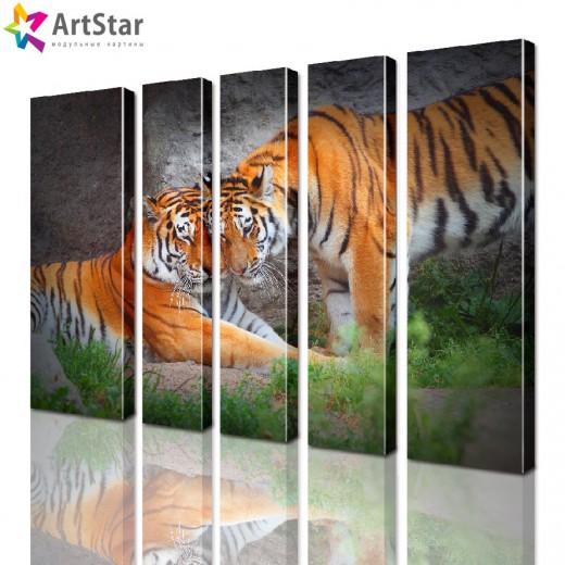 Модульные картины - животные, Art. anml_0115