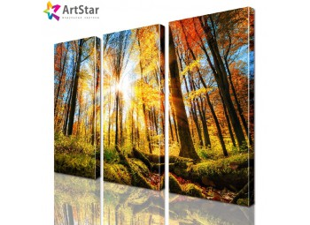 Модульная картина - Осенний лес, Art. natrl_0029
